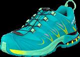 Salomon - XA PRO 3D GTX® W 10-YR LTD Real Blue/ Lucite Green