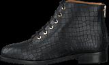 Blankens - The Lovisa Black Reptil