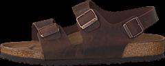 Birkenstock - Milano Regular Leather Habana